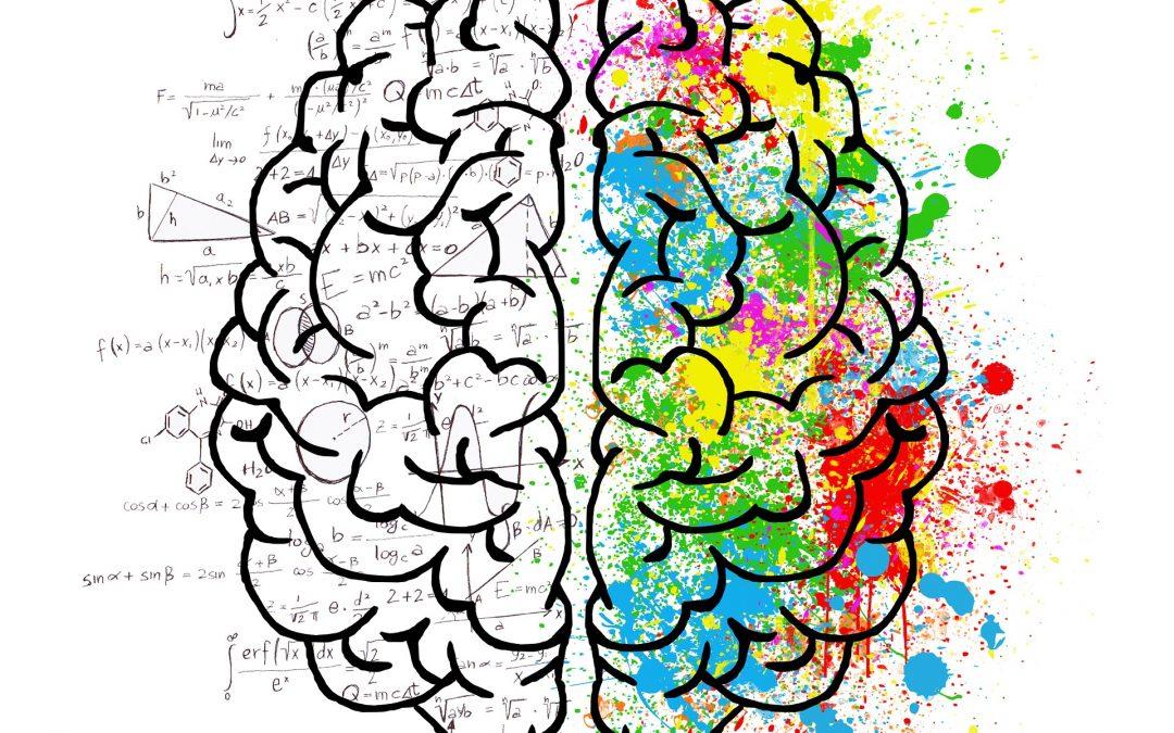 Calcul du métabolisme de base : Connaissez-vous vos besoins réels ?
